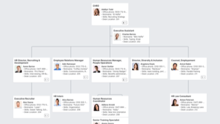 Human Resources Org Chart Template